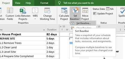 Set a Baseline in MS Project